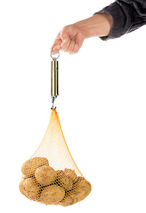 Using a Spring Balance to Weigh Potatoes