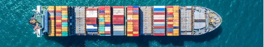 Container Ship with Cargo