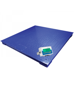 PT Floor Platform Scale With AE 403 Indicator